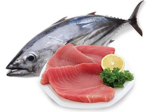 món ngon từ cá ngừ đại dương